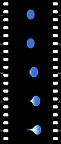 ComboFilmstrip